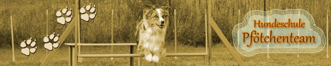 Hundeschule Pfötchenteam